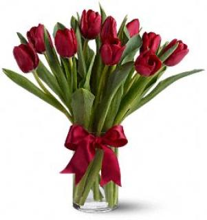 Love Your Tulips (Red)