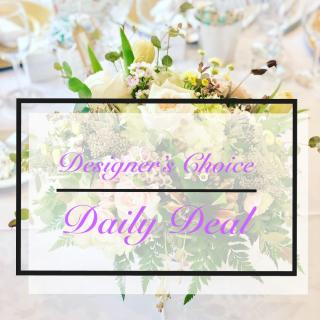 Designer\'s Choice Daily Deal