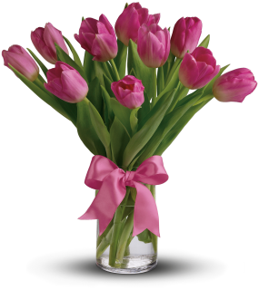 Graceful Tulips (Pink)