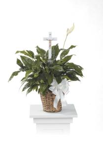 Peace Lily with Cross