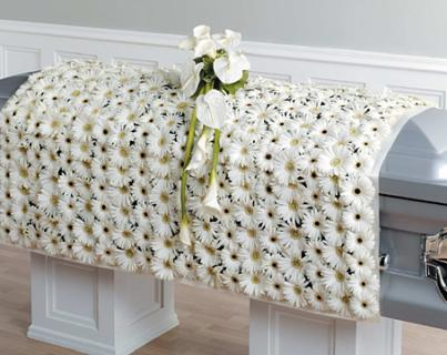 White Daisy Blanket